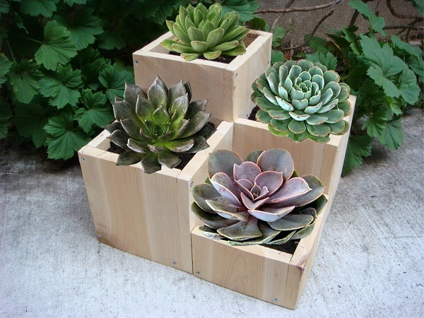 diy wooden plant holders