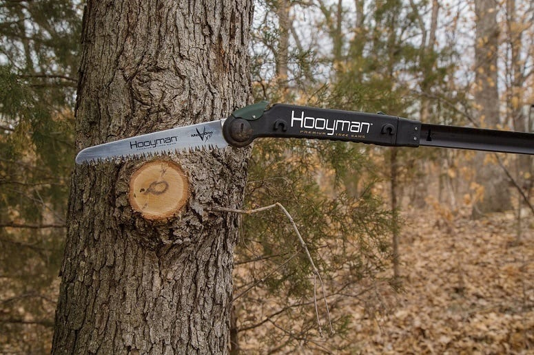 Pole Saws 101: Everything You Need To Know | SawsReviewed com