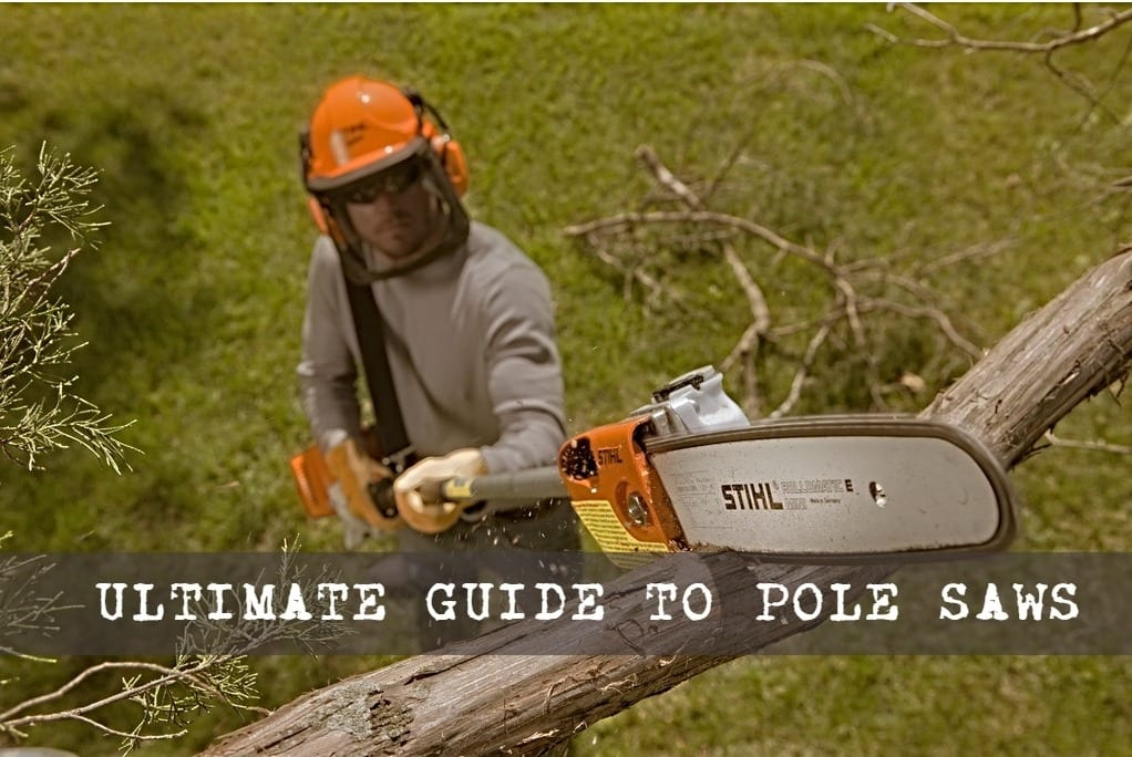 Pole Saws 101: Everything You Need To Know | SawsReviewed