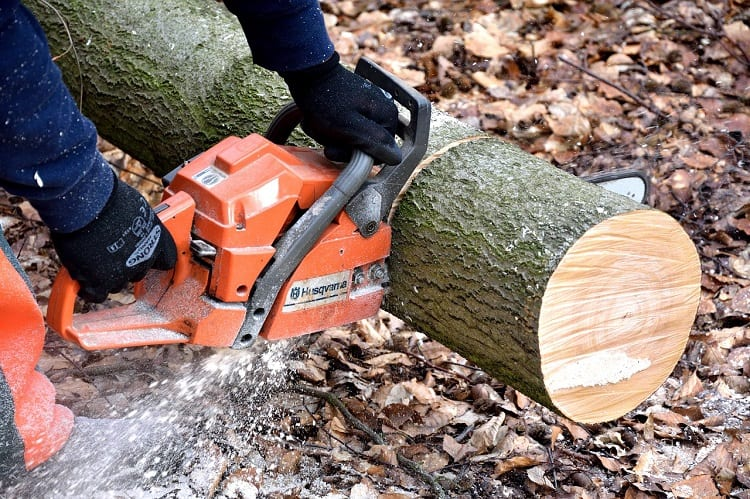 Chainsaws 101 – A Complete Beginner's Guide 1